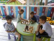 День торта и шахмат